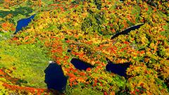 層雲峡で紅葉見ごろ