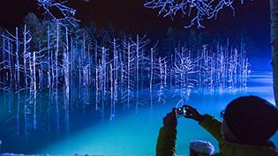 「青い池」ライトアップ 美瑛