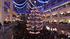 15mツリー4千人魅了 サッポロファクトリーで点灯