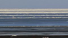 半島にもいよいよ流氷到来 接岸も間近か<知床リポート>