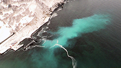 ニシンの精子で海面が乳白色に 小樽沿岸で群来 北海道で今年初確認